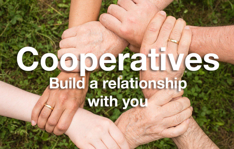 Baner Grup Integral - Cooperatives